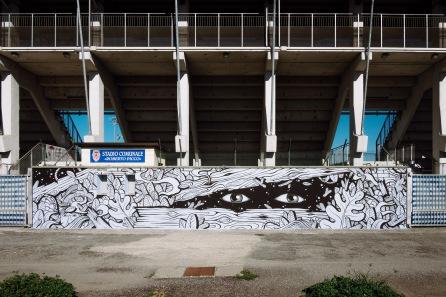 Fallout Walls, Trino, Campo Sportivo, 2016
